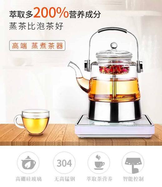 贵阳球王会体育平台,提手壶蒸茶器